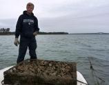 Relève de cages dans la baie